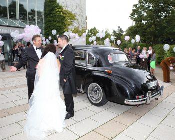 Tamada, Hochzeit, deutsch, russisch, band, musiker, bayern_7